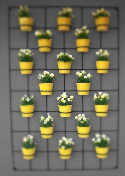 Jardins verticais afe maria for Reja para jardin vertical